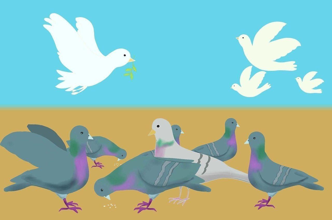 平和の象徴もマンションでは厄介者?